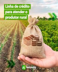 Linha de crédito para atender o produtor rural.